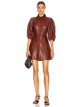 Lamb Leather Dress