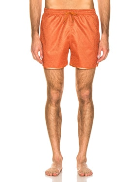 Lurex Swimshort