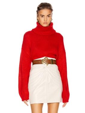 Samantha Turtleneck Sweater