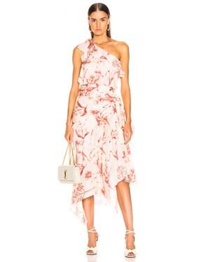 Inamorado Dress