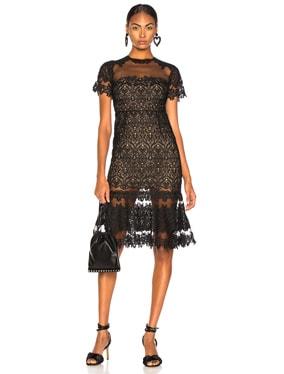 Lace Sheer Ruffle Dress