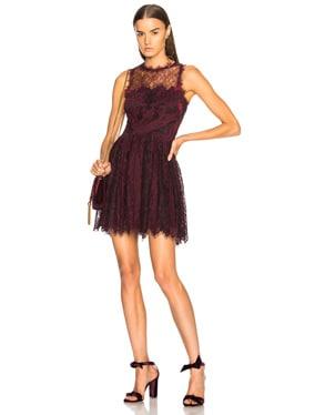 Grommet Lariat Lace Mini Dress
