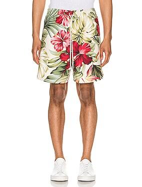 Kilikopela Shorts