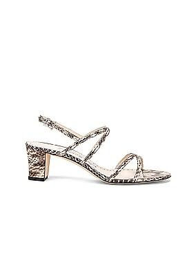 Amata 50 Sandal