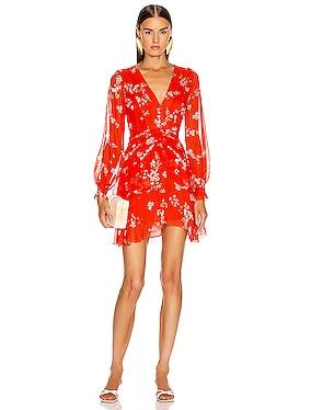 Floral Pintuck Long Sleeve Mini Dress