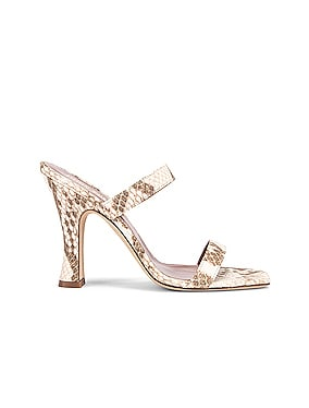 Faded Python Print Mule