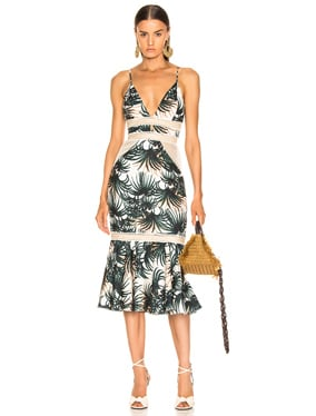 Palm Print Fitted Midi Dress