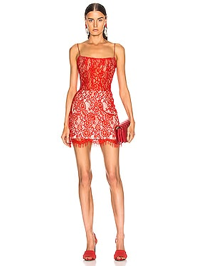 for FWRD Lace Mini Dress