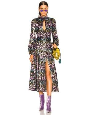Velvet Asia Dress