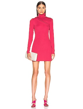 Long Sleeve Turtleneck Mini Dress