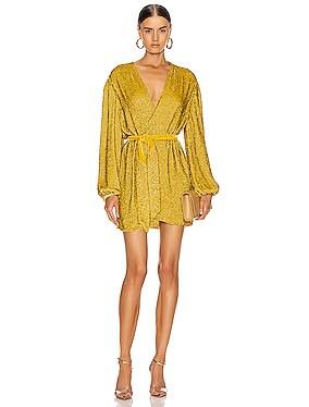 Gabrielle Robe Dress