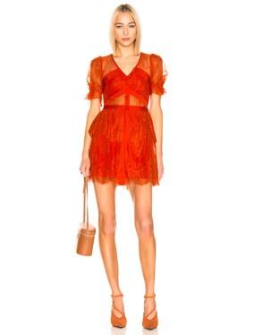 Floral Fine Lace Mini Dress