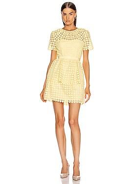 Heart Lace Mini Dress