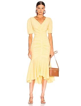 Panier Dress