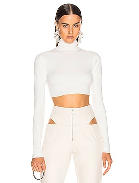Turtleneck Cropped Knit Top