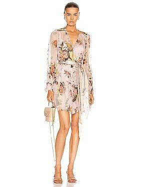 Brightside Lantern Sleeve Mini Dress
