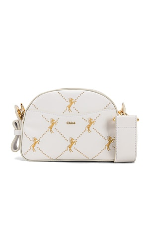 Mini Signature Embroidered Leather Bag