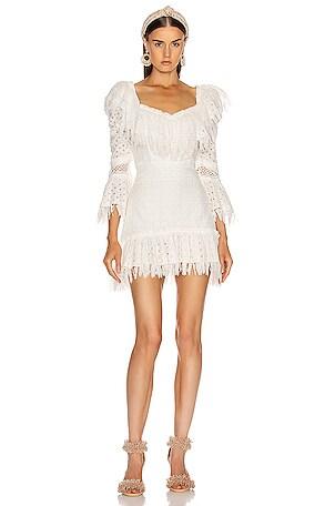 Ruffled Fringe Mini Dress