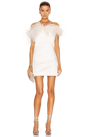 Feathers Mini Dress